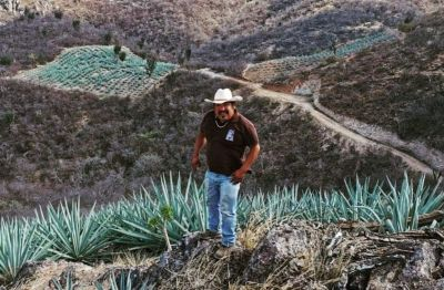 Photo for: El Rey Zapoteco Mezcal - Oaxaca's oldest artisanal mezcal brand